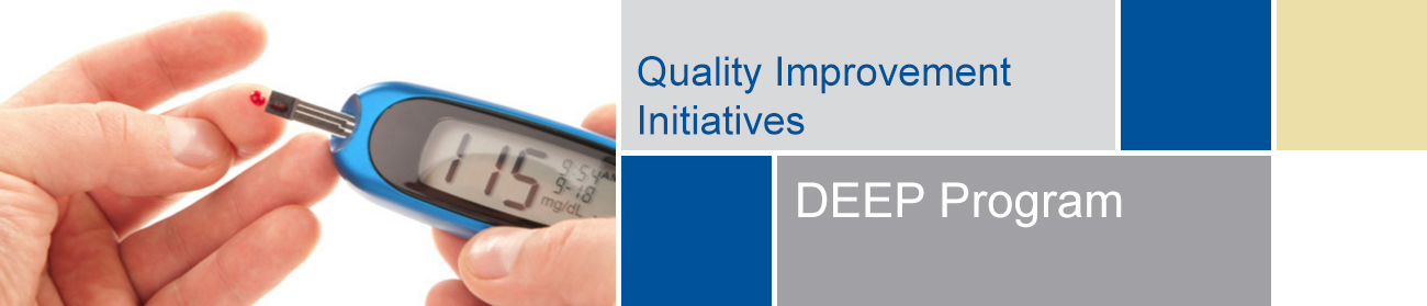 Quality Improvement Initiatives - Diabetes DEEP program