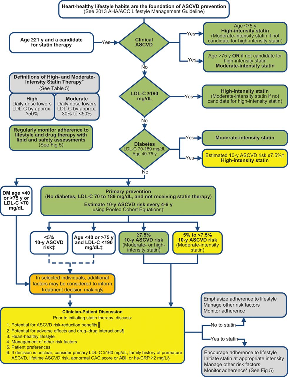 I. Cholesterol Flow Diagram